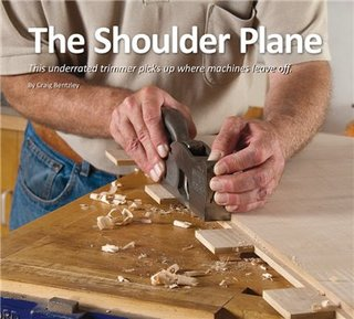 Shoulderplane1
