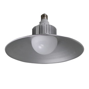 2500 Lumen LED Utility Bulb with Hood, 30W