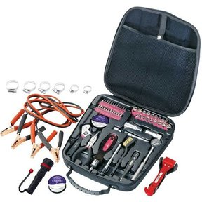 64 pc. Automotive Tool Kit, Pink, Model DT0101P