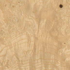 Ash Burl Veneer 3 sq ft pack
