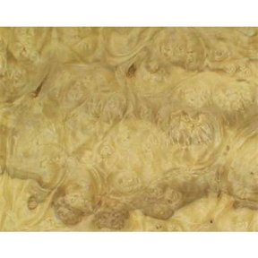 Ashburl, Olive 4'X8' Veneer Sheet, 10MIL Paper Backed