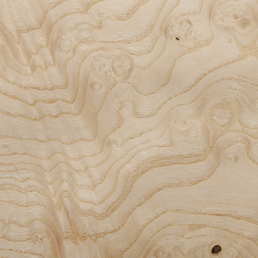 View a Larger Image of Ashburl, White 4'X8' Veneer Sheet, 10MIL Paper Backed