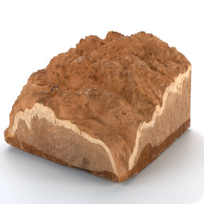 Australian Brown Mallee Burl Turning Blank 2kg-4kg