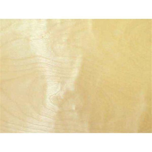 """View a Larger Image of Birch, White 2"""" x 50' Edge Banding"""
