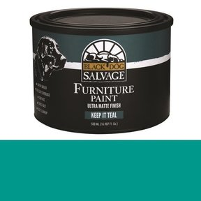 'Keep It Teal' - Teal Furniture Paint, PintPlus 500ml (16.907 fl. oz.)