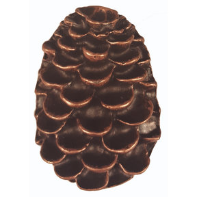 Pine Cone Pull, Antique Copper, Model 325AC