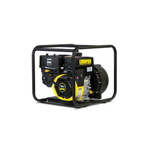 "Champion 2"" Chemical Transfer Pump, Model 66526"