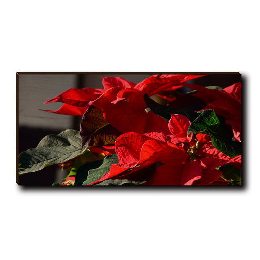 "View a Larger Image of Cutting Board Pleasant Poinsettia 12"" x 6"""