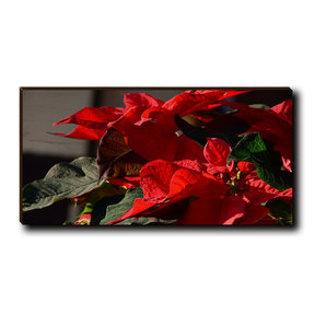 "Cutting Board Pleasant Poinsettia 12"" x 6"""