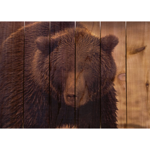 View a Larger Image of Big Bear 33x24 Wood Art