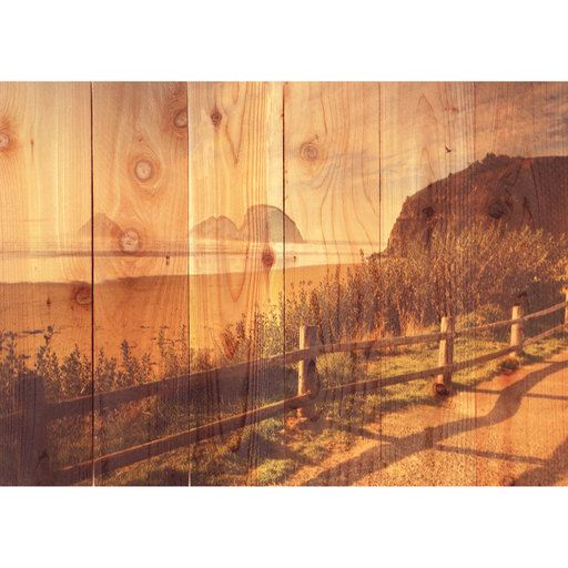 "View a Larger Image of Daydream Gizaun Cedar Wall Art, Coastal Stroll, 33"" x 24"""
