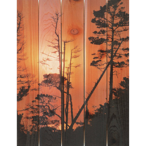 View a Larger Image of Ocean Forest 16x24 Wood Art