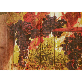 Old Vines 33x24 Wood Art