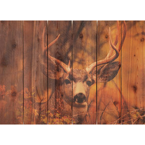 "Daydream Gizaun Cedar Wall Art, Perfect Look, 33"" x 24"""