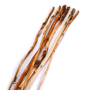 Diamond Willow Walking Stick 1pc