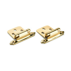 Brass No Inset Surface Mount Hinge, Pair