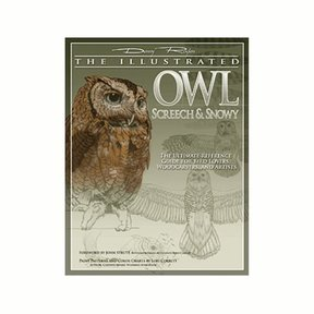 Illustrated Owl - Screech & Snowy: the Ultimate Reference for Bird Lovers, Woodcarvers, and Artists