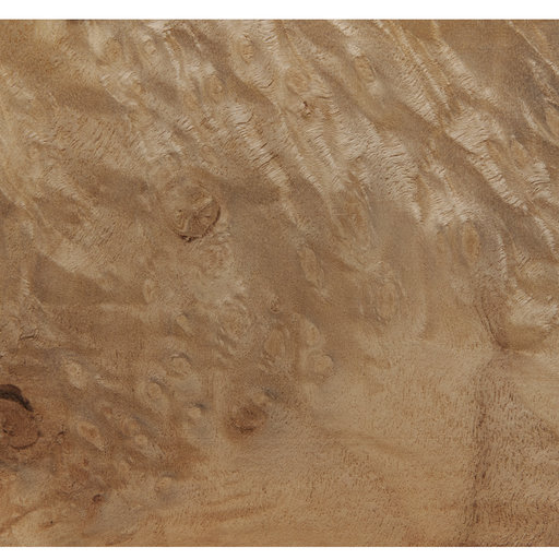 View a Larger Image of Myrtle Burl 4'X8' Veneer Sheet, 3M PSA Backed