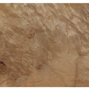 Myrtle Burl Veneer Sheet 4' x 8' 2-Ply Wood on Wood