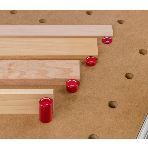 View a Larger Image of OneTIME Tool 20mm Deluxe Bench Dog Kit With Systainer