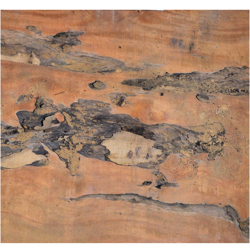 "View a Larger Image of Pequia (Caryocar Villosum) Slab 100"" x 55"" x 2"""