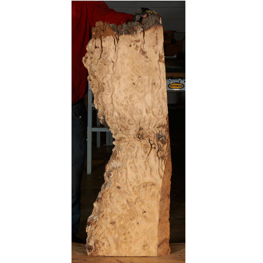 "View a Larger Image of Pequia (Caryocar Villosum) Slab 38"" x 10"" x 2"""