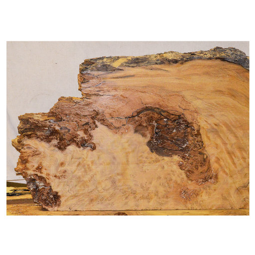 "View a Larger Image of Pequia (Caryocar Villosum) Slab 49-1/2"" x 20"" x 2"""