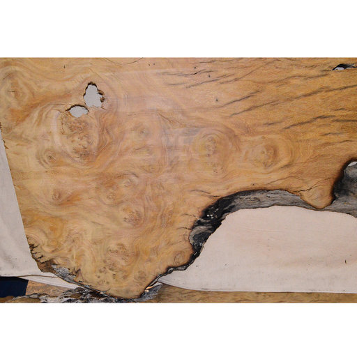 "View a Larger Image of Pequia (Caryocar Villosum) Slab 96"" x 29"" x 2"""