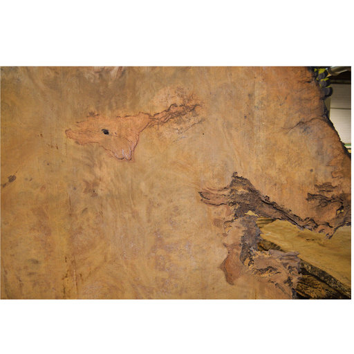 "View a Larger Image of Pequia (Caryocar Villosum) Slab 97"" x 44 x 2"""