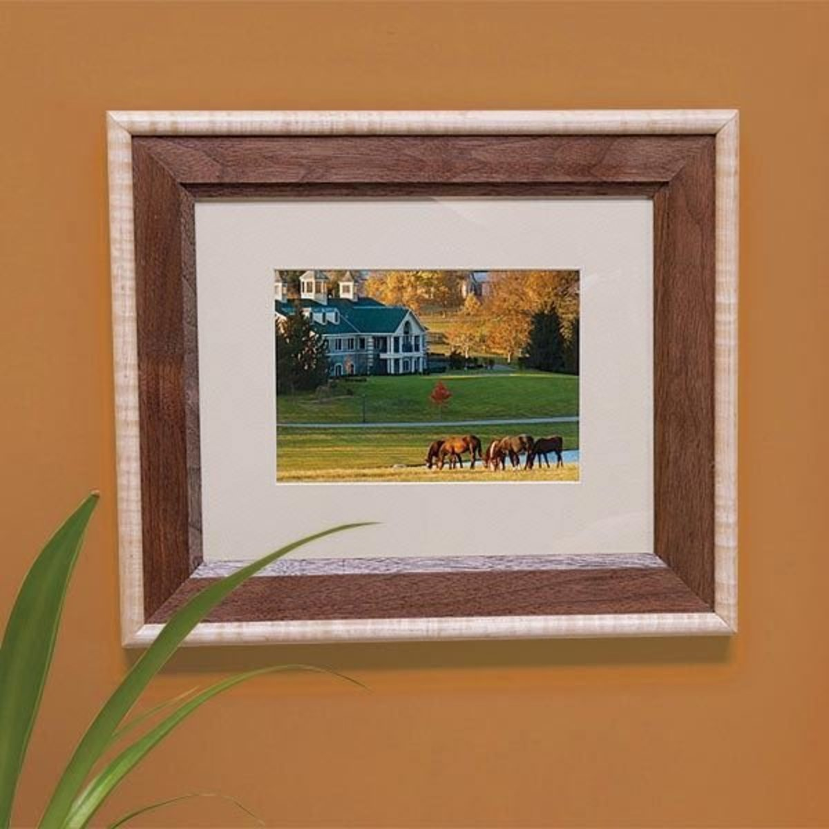 picture frames downloadable plan