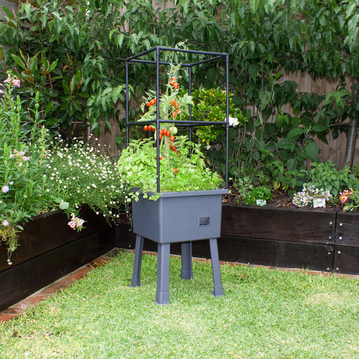 """View a Larger Image of Planter-Trellis Frame and Greenhouse Cover 15.75"""" x 15.75"""" x 63"""""""