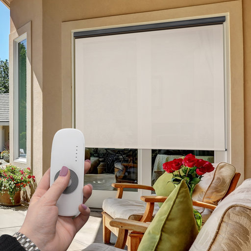View a Larger Image of Premier Rechargeable Motorized Outdoor Sun Shade with Protective Valance, 10' W x 8' L, Palm