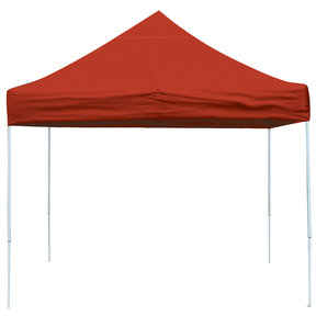 10 ft. x 10 ft. Pro Pop-up Canopy Straight Leg, Red Cover
