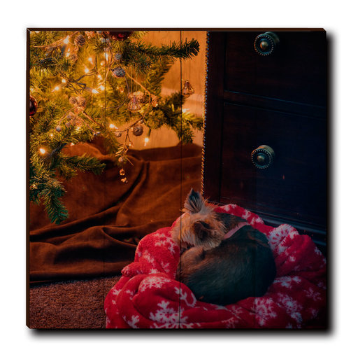 """View a Larger Image of Wall Art Cozy Spot 24"""" x 24"""""""