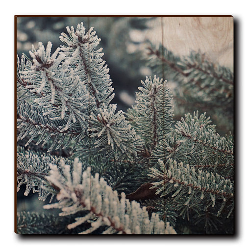 """View a Larger Image of Wall Art Frosty Pine 12"""" x 12"""""""