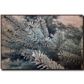 "Wall Art Frosty Pine 36"" x 24"""