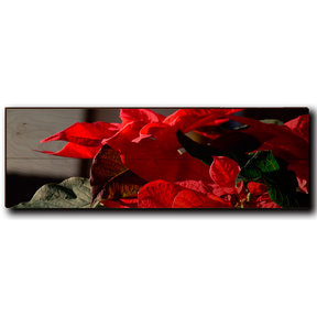 "Wall Art Pleasant Poinsettia 24"" x 8"""