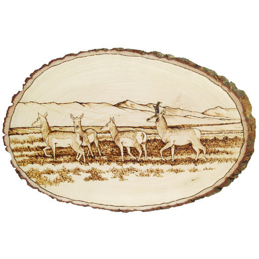View a Larger Image of Walnut Hollow Basswood Country Rounds Large