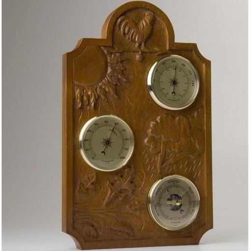 """View a Larger Image of : """"Carved Weather Station"""" - Downloadable Plan"""