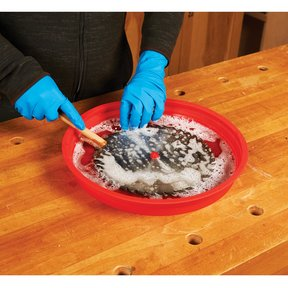 WoodRiver Blade Cleaning Tray