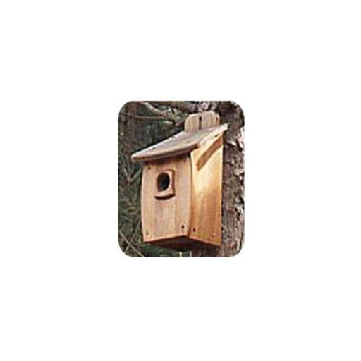 View a Larger Image of Woodworking Project Paper Plan to Build Extra Large Birdhouse