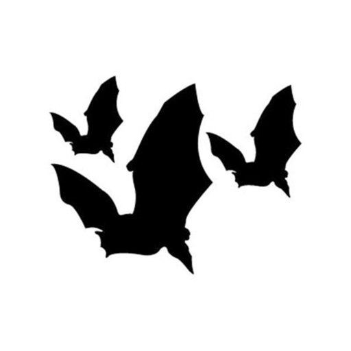 View a Larger Image of Woodworking Project Paper Plan to Build Flying Bats Shadow
