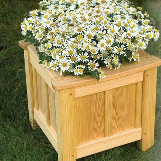 View a Larger Image of Woodworking Project Paper Plan to Build Garden Planter