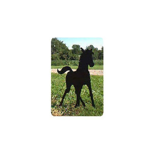 View a Larger Image of Woodworking Project Paper Plan to Build Spring Foal Shadow