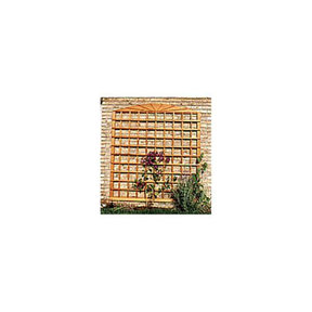 Woodworking Project Paper Plan to Build Wall Trellis
